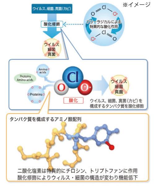 CROXIDE 除菌のしくみ